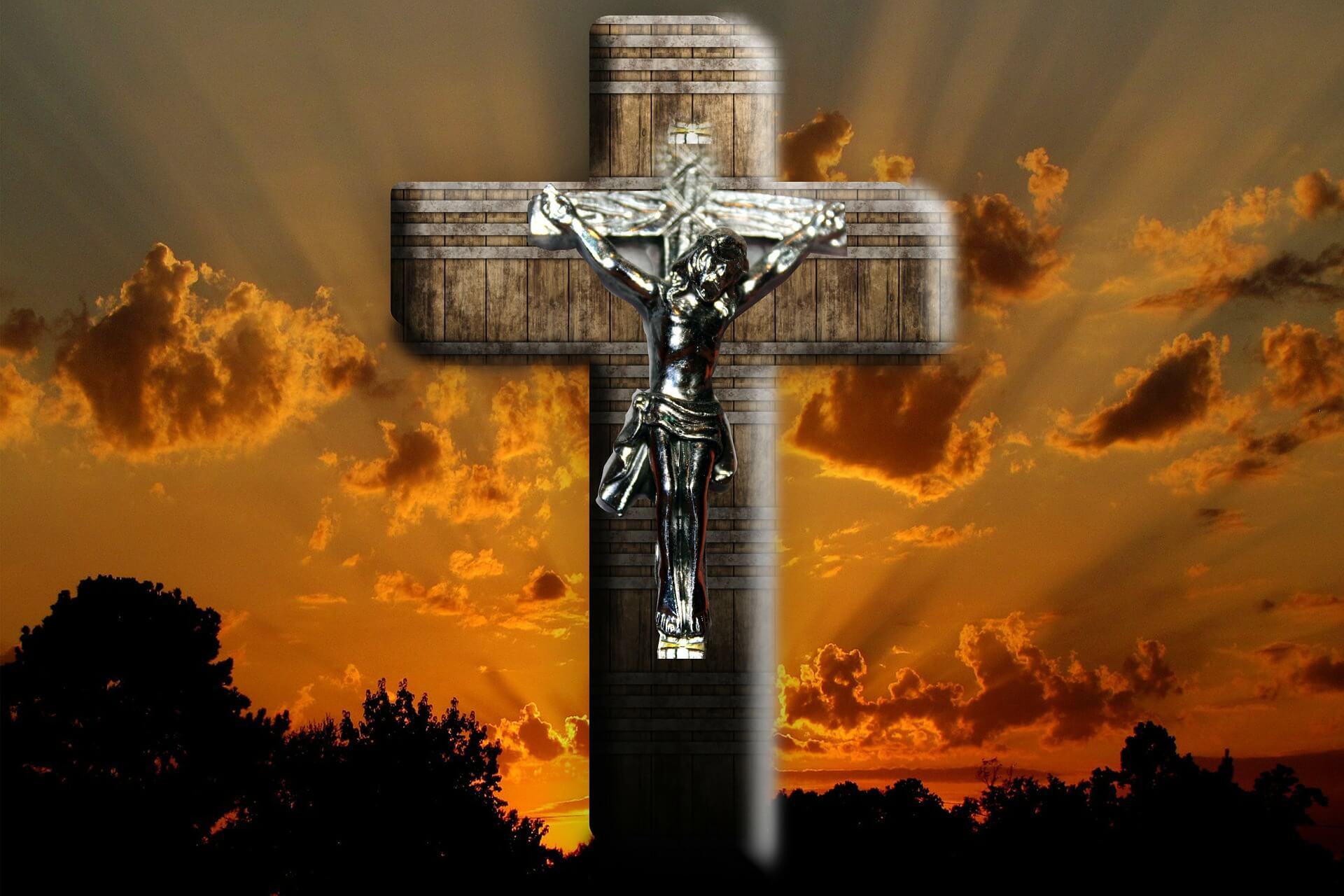OGŁOSZENIA DUSZPASTERSKIE  XV Niedziela Zwykła